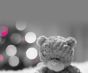 bear, black and white, and teddy image