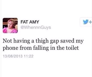 funny and fat amy image