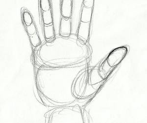 anatomy, hands, and how to draw image