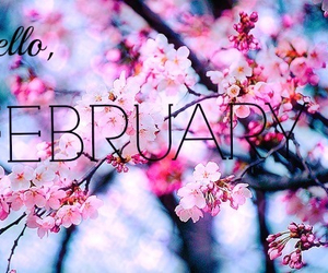 february, winter, and flowers image