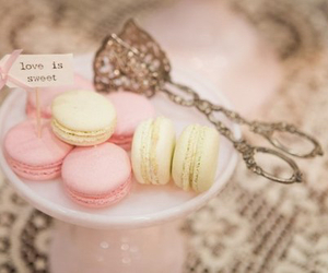pink, sweet, and macaroons image