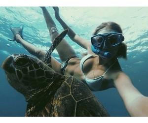 animal, girl, and turtle image
