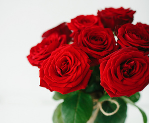 red roses, beautiful, and flowers image