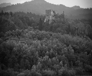 landscape, castle, and nature image