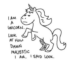 unicorn, majestic, and funny image