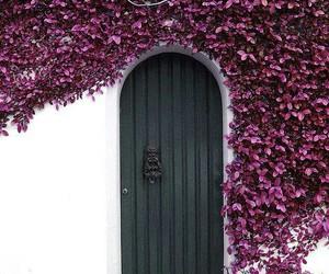 door, flowers, and purple image