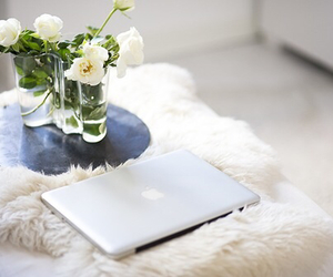 flowers, apple, and home image
