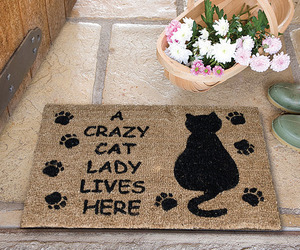 cat, gift, and home image