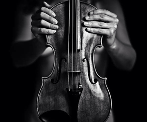 black and white, violin, and music image