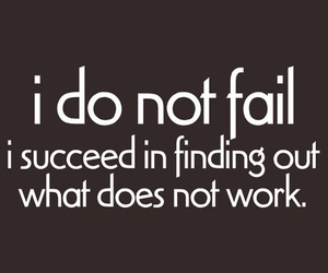 funny quote and i do not fail image