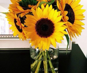 flowers, sun, and yellow image