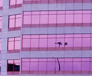 pink, aesthetic, and header image