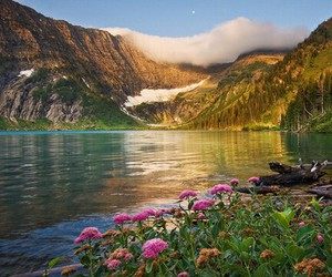 beutiful, nature, and scenery image