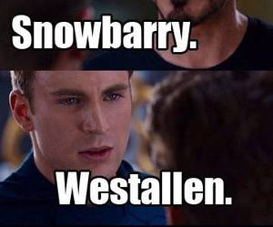 the flash, snowbarry, and westallen image