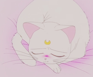 cat, pink, and sailor moon image