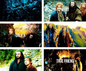 the hobbit, bilbo baggins, and thorin oakenshield image