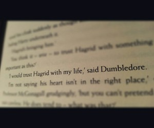 albus dumbledore, dumbledore, and friendship image