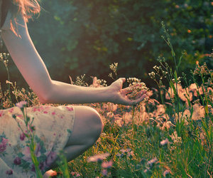 fairy, flowers, and spring image
