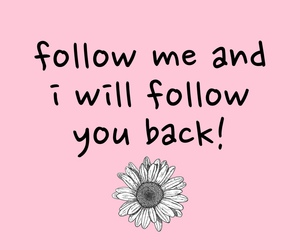 follow, flowers, and pink image