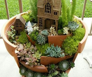 plants, garden, and nature image