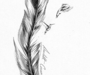 feather, birds, and tattoo image
