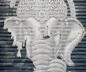 elephant, art, and street art image