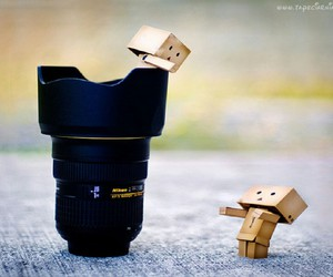 photo, photography, and canon image