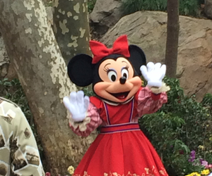 disney, disneyland, and minnie image