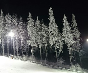 Skiing, snow, and white image