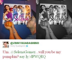 lol, pumpkin, and selena gomez image