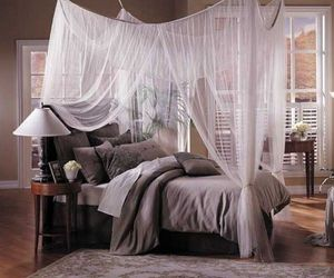 bed and canopy image