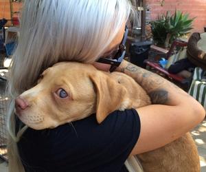 dog, girl, and tattoo image
