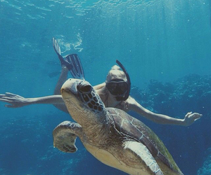 girl, turtle, and ocean image