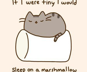 cute animals, pusheen the cat, and awesome image