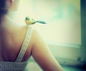 beautiful, bird, and girl image