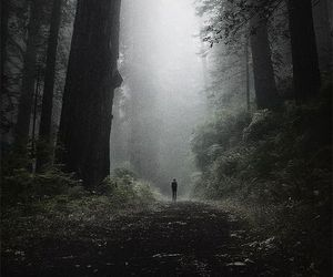 dark, tumblr, and vintage image