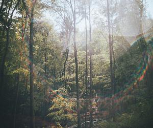 Image by mathilde fuchs