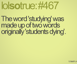 funny, quote, and studying image