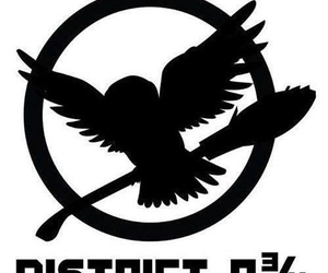harry potter, hunger games, and district image