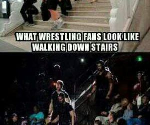 wwe and the shield image