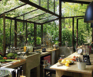 kitchen, home, and nature image