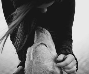 animals, girl, and love image
