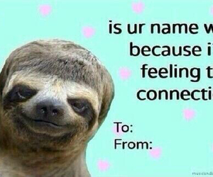 sloth, funny, and valentine image