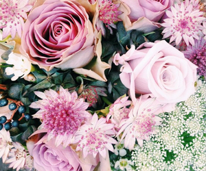 background, beauty, and flowers image
