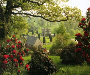 garden, england, and Cornwall image