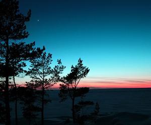 sky, tree, and sunset image
