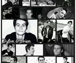 black&white, bw, and dylan image