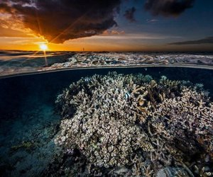 sunset and underwater image