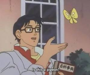 anime, funny, and butterfly image