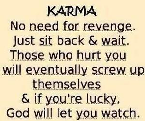 karma and revenge image
